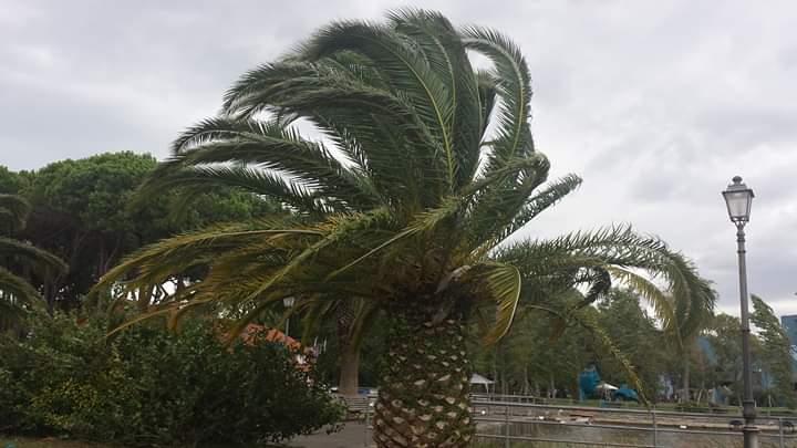 Maltempo, a Cecina scuole chiuse, Livorno chiude parchi e cimiteri