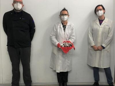 """Refezione ospedaliera: da Siaf un """"bacio"""" al cioccolato per augurare buon anno ai pazienti Covid-19"""