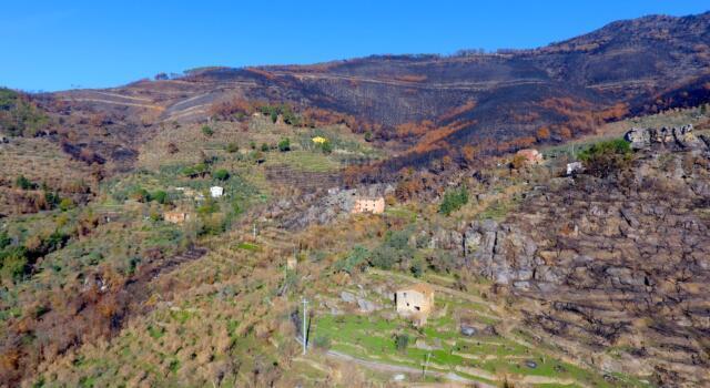 """Sui Monti Pisani 100 partecipanti per l'escursione """"Climbing for Climate"""""""