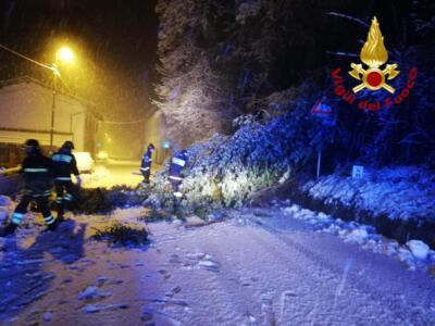 Superlavoro per i vigili del fuoco, neve e alberi sulle strade a Pistoia