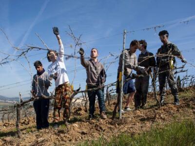 Scuola per contadini: Il 90 % dei 'diplomati'  ha trovato un lavoro stabile. Nuove iscrizioni
