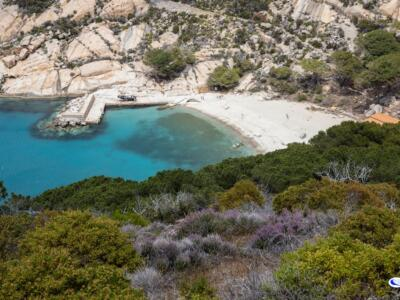 Parco Nazionale Arcipelago Toscano nel gotha mondiale delle aree protette