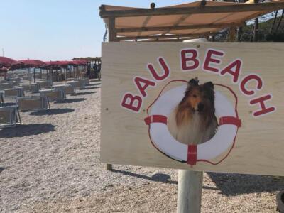 """Manifestazione di interesse finalizzata alla gestione della """"Bau Beach"""" alle Gorette"""