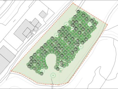 Un polmone verde ad Altopascio con 2000 nuovi alberi