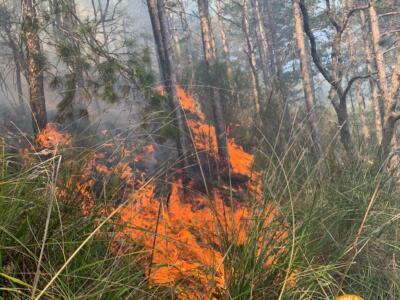Incendio sui monti pisani, fiamme in direzione delle abitazioni