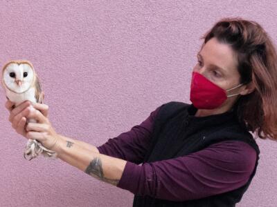 Soccorso fauna selvatica, convenzione Comune di Livorno/CRUMA Lipu