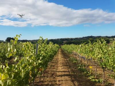 Consorzio di Bonifica 6, progetto per ridurre il consumo di acqua nell' agricoltura