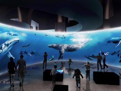 A Portoferraio un percorso emozionale tra i mammiferi marini