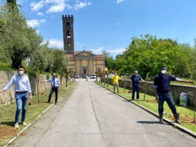 """""""Un albero per ogni nuovo bimbo o bimba"""": 13 nuovi alberi sul viale della chiesa di Camigliano"""